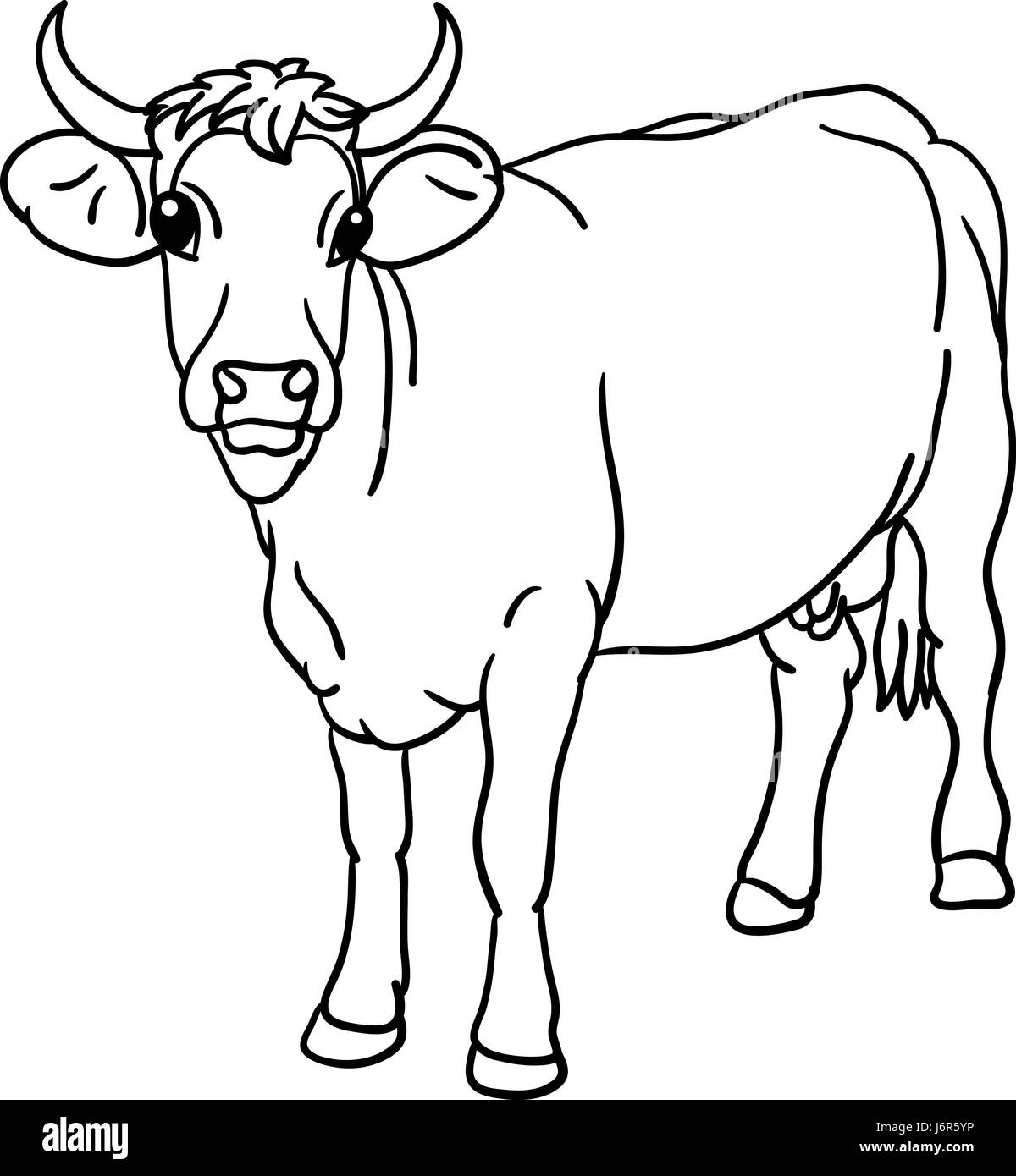 Uncategorized How To Draw Cow isolated animal illustration cow draw art mammal stock photo agriculture