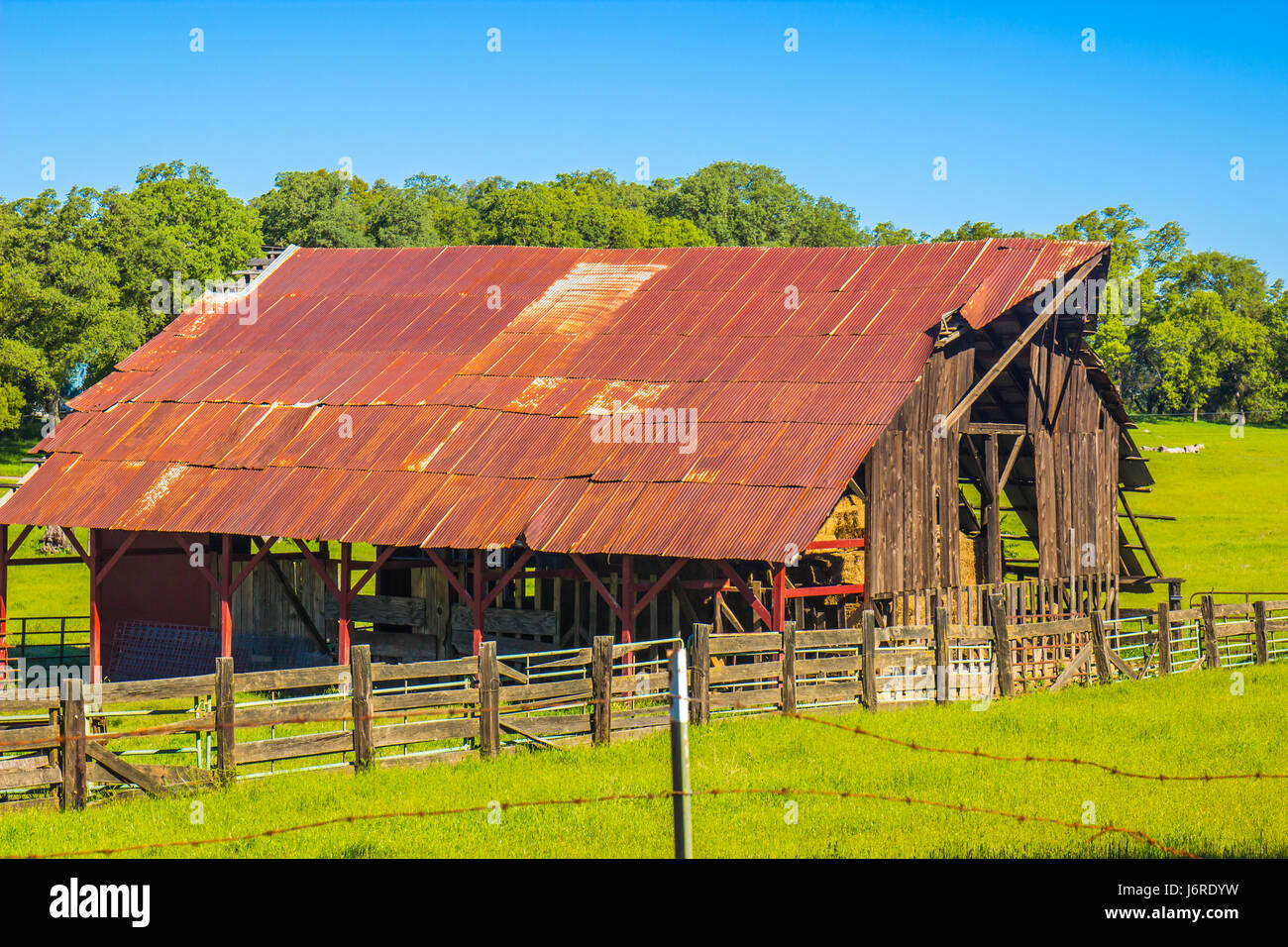 Old Rusted Tin Roof Barn On Ranch   Stock Image