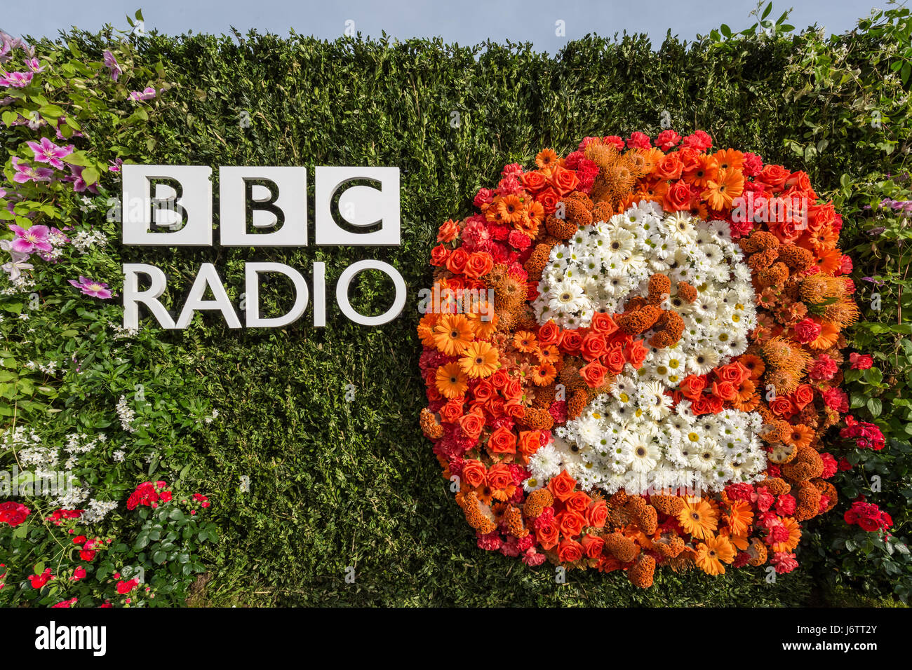 Chelsea flower show channel 4