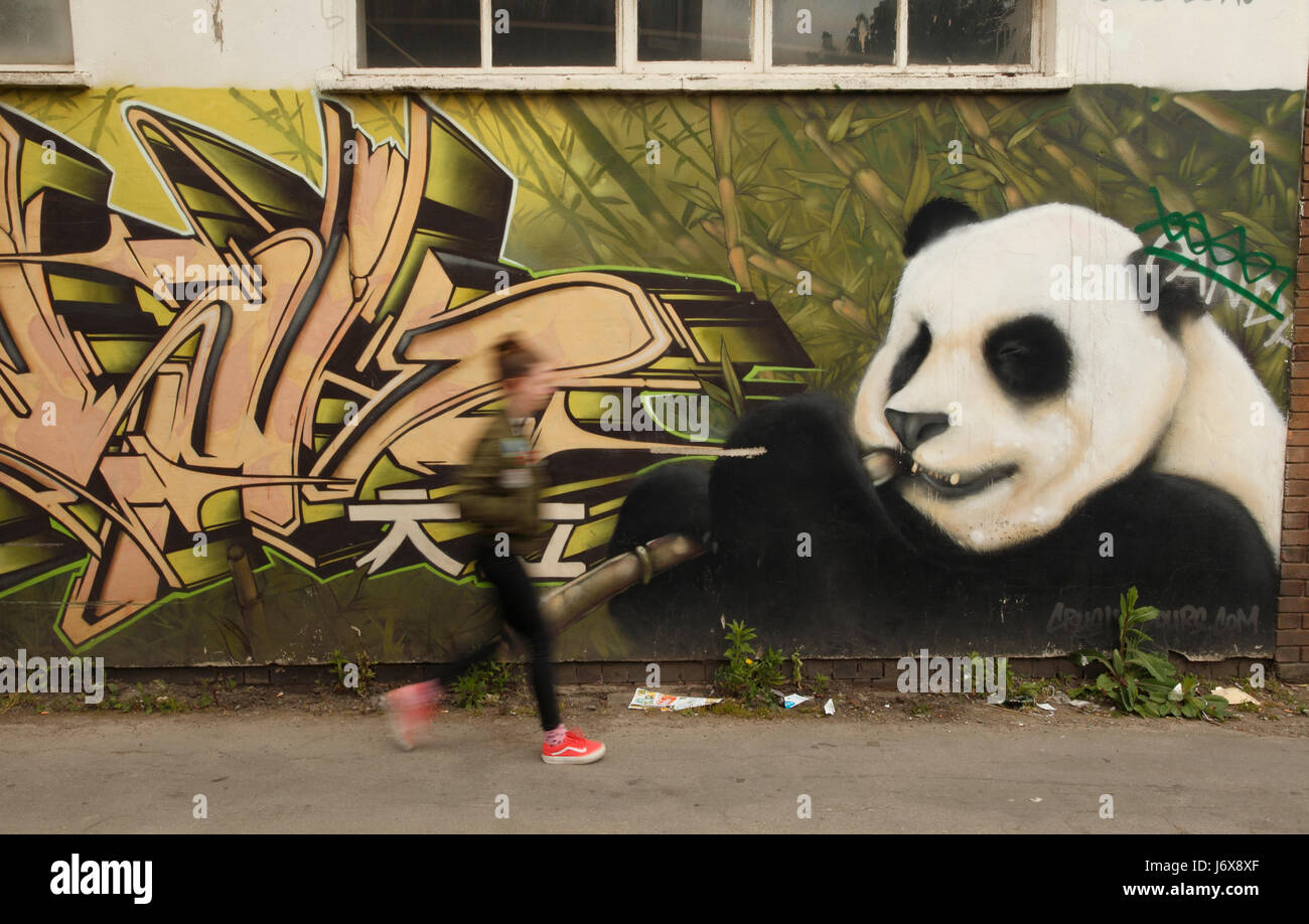 Back alley wall mural cardiff stock photos back alley wall mural panda wall mural in a side street or alley in cardiff wales stock amipublicfo Image collections