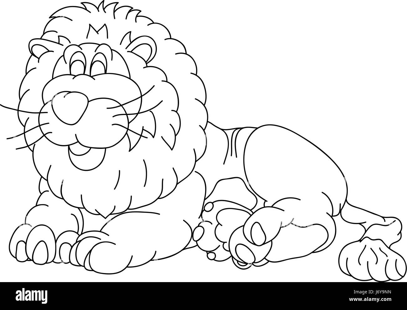 big male lion laughing smiling stock photos u0026 big male lion