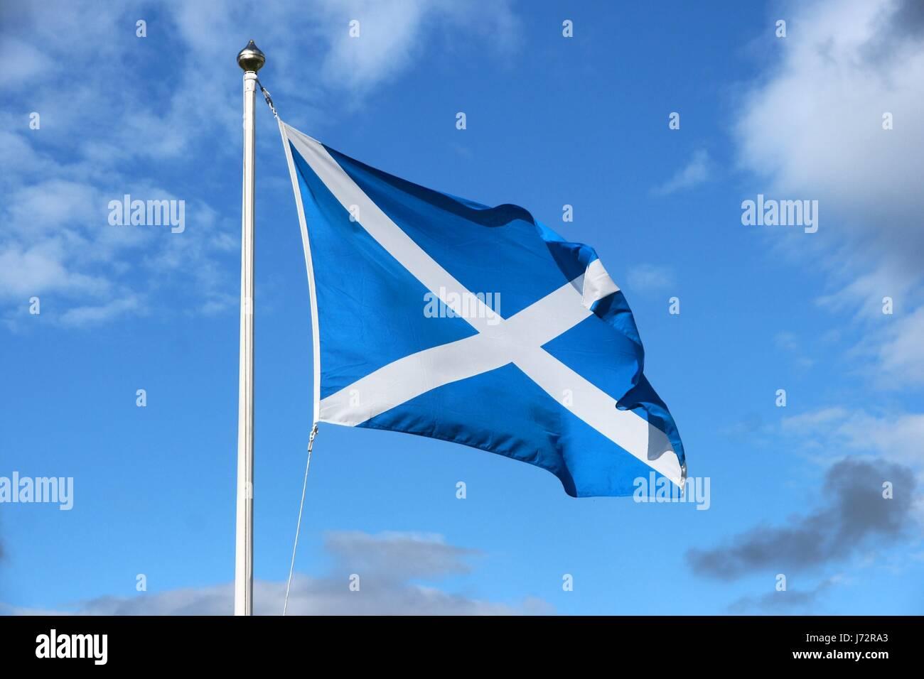 scotland flag stock photos u0026 scotland flag stock images alamy