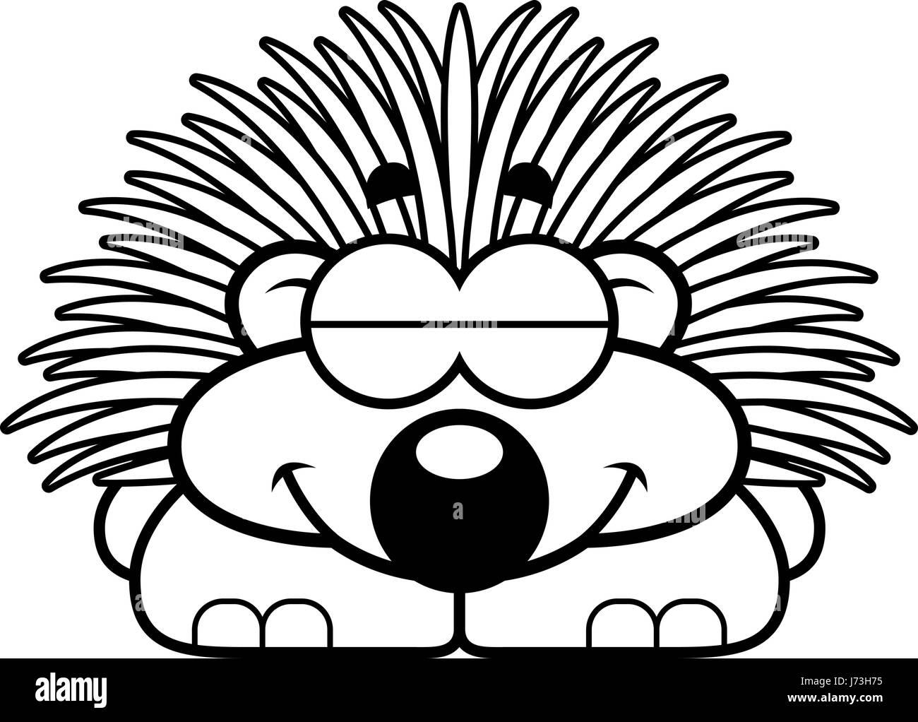 the porcupine black and white stock photos u0026 images alamy