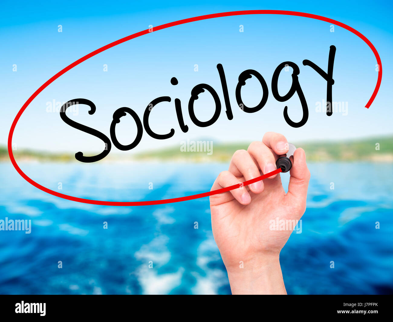 man hand writing sociology black marker on visual screen man hand writing sociology black marker on visual screen isolated on background business technology internet concept stock photo