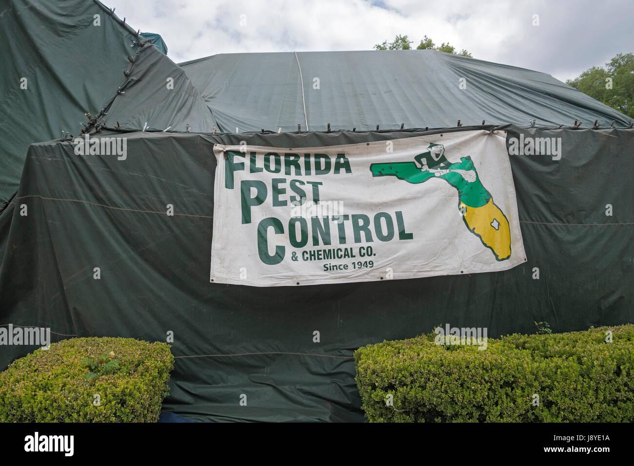 Tent fumigation of home & Tent fumigation of home Stock Photo: 143203910 - Alamy