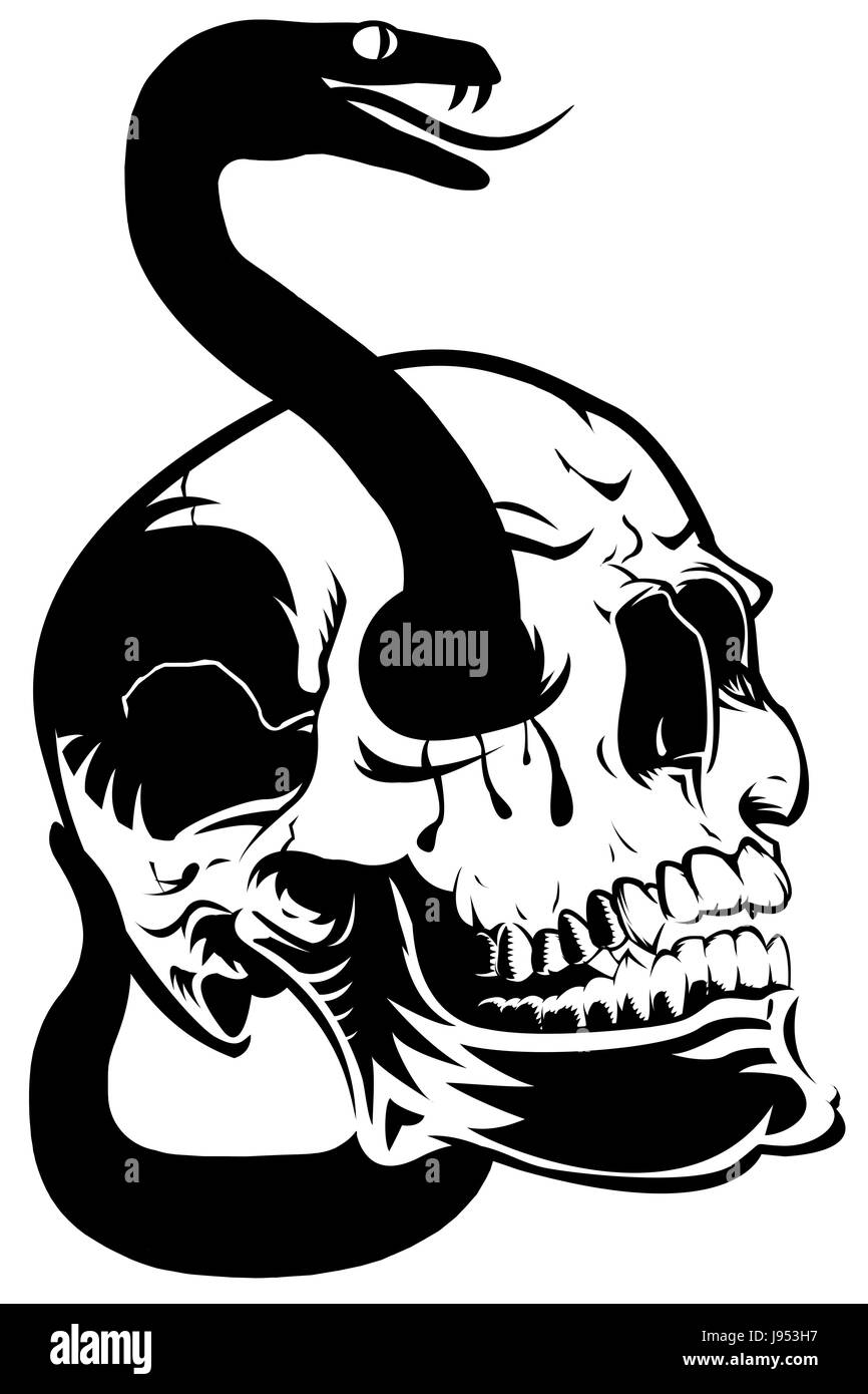 stock photo eyes skull halloween blood snake poison skeleton head art isolated - Halloween Skeleton Head