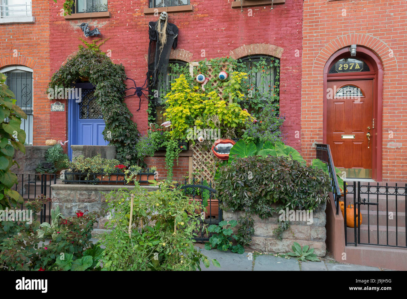 stock photo for halloween decorated residential house in the cobble hill brooklyn long island new york city new york the usa - Halloween Decorated House
