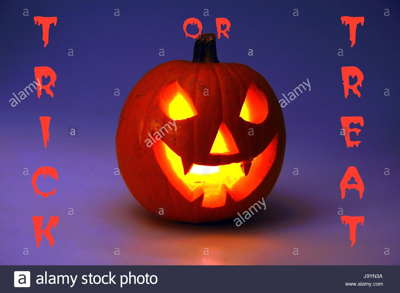 scary halloween pumpkin lit candlelight trick or treat  scary halloween pumpkin lit candlelight trick or treat writing on the background