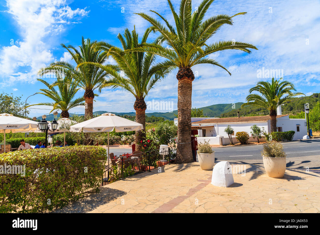ibiza island, spain - may 18, 2017: garden of traditional