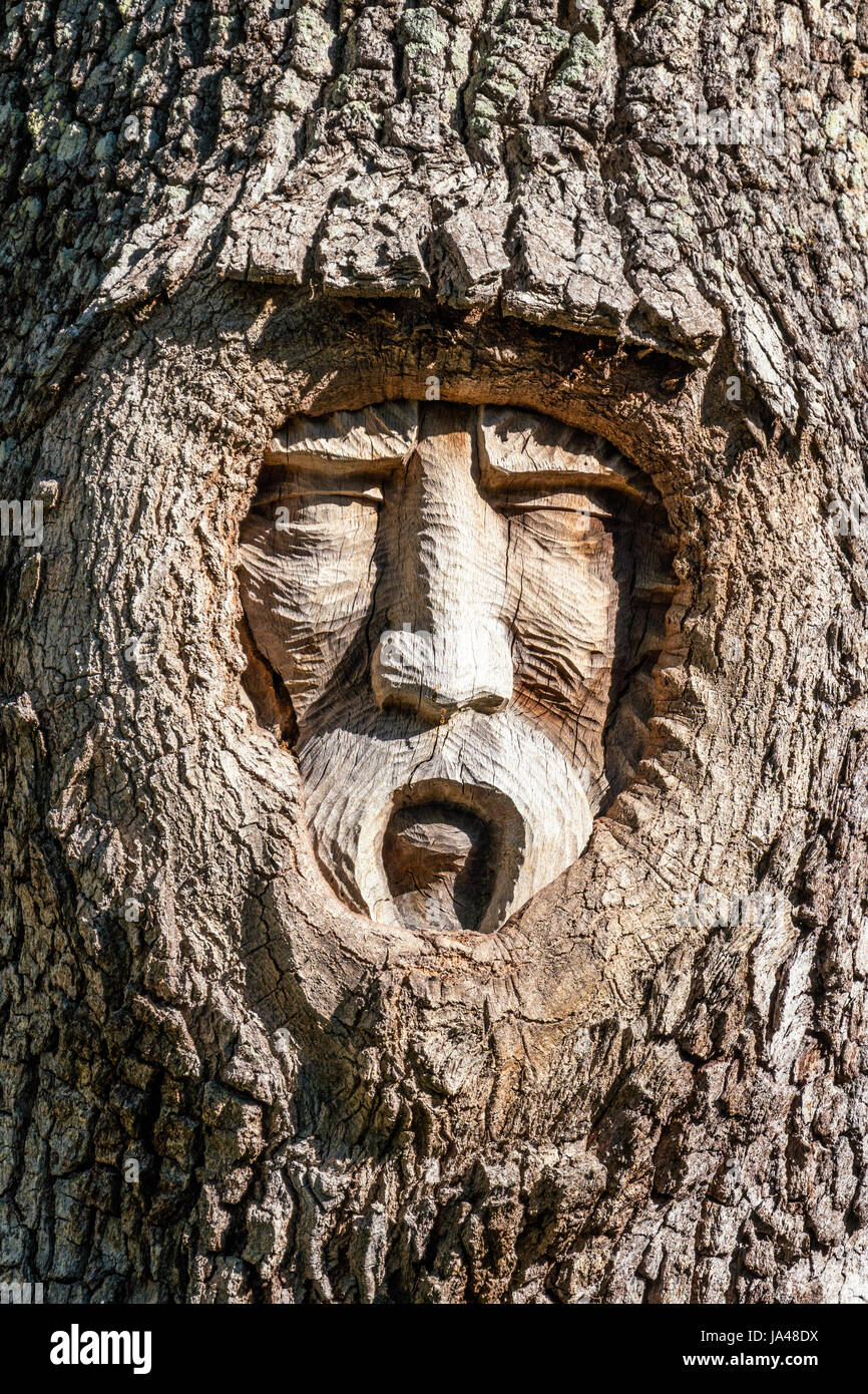 With their sad sorrowful expressions the tree spirits of
