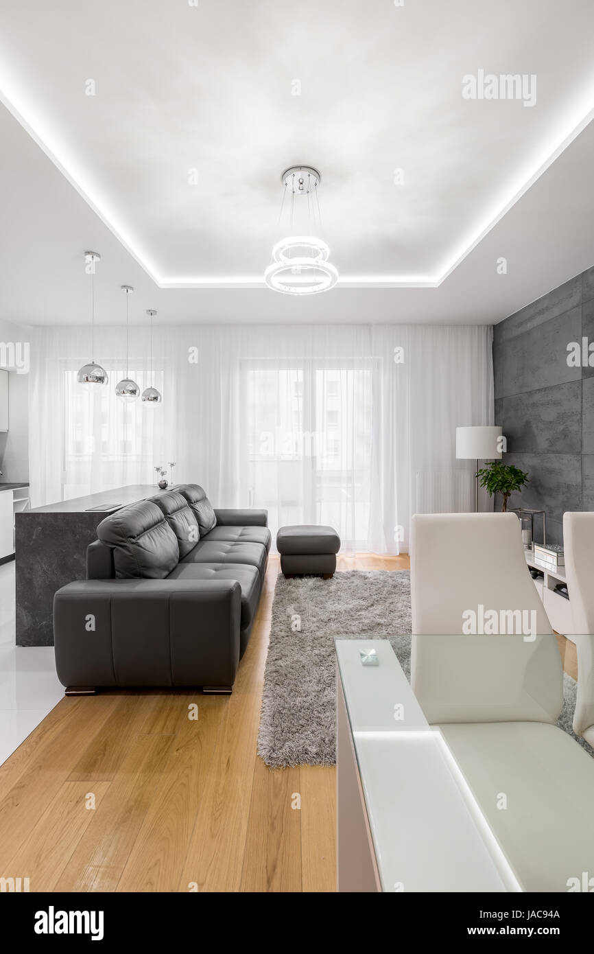 Modern, Grey And White Living Room With Couch, Pouf And Dropped Ceiling