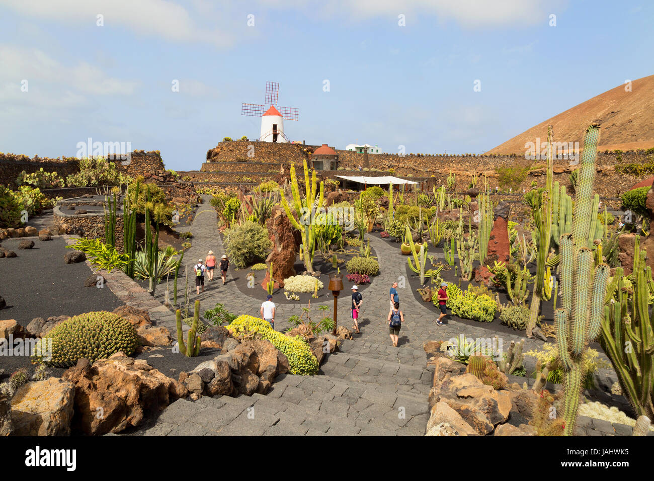 lanzarote cactus garden or jardin de cactus designed by local artist cesar manrique lanzarote canary islands europe