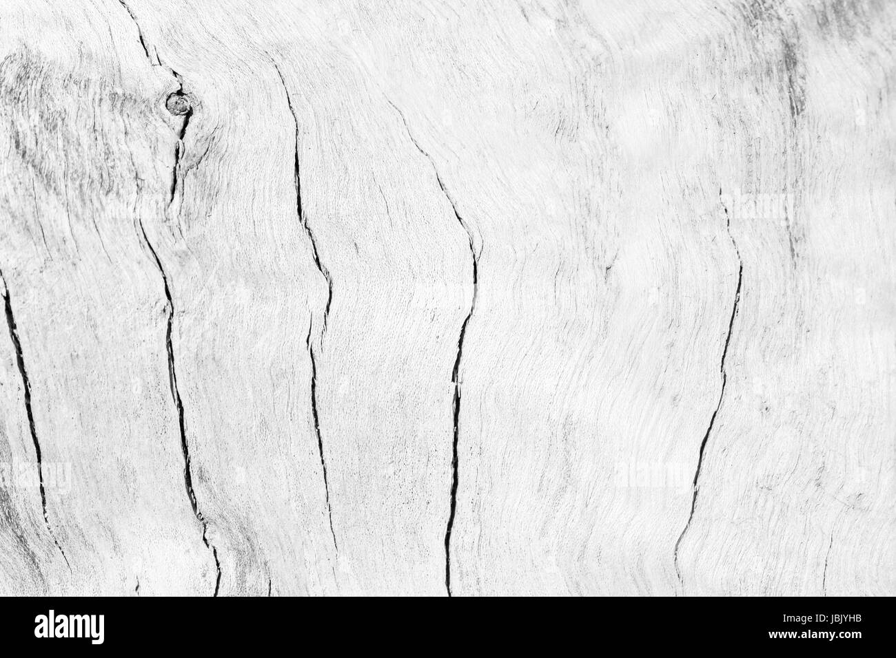 Abstract Surface White Wood Table Texture Background Close Up Of Dark Rustic Wall Made Planks Te