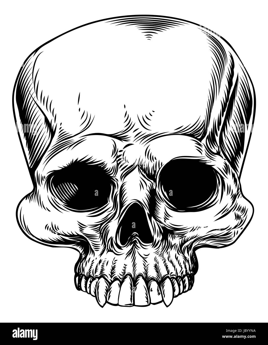 a drawing of a human skull in a etched woodcut style