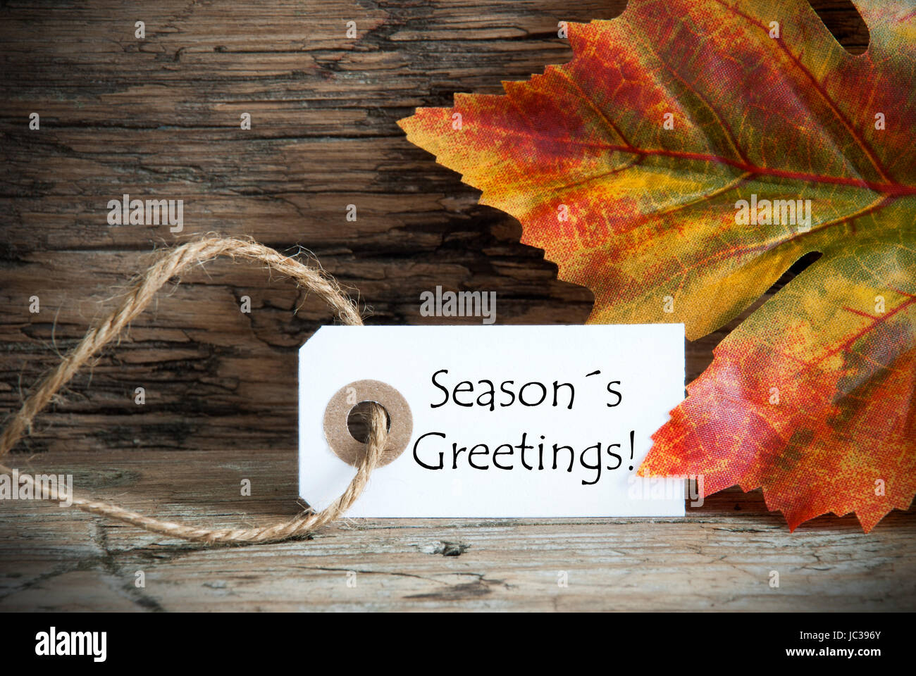 A fall label with the words seasons greetings on it autumn stock a fall label with the words seasons greetings on it autumn background m4hsunfo