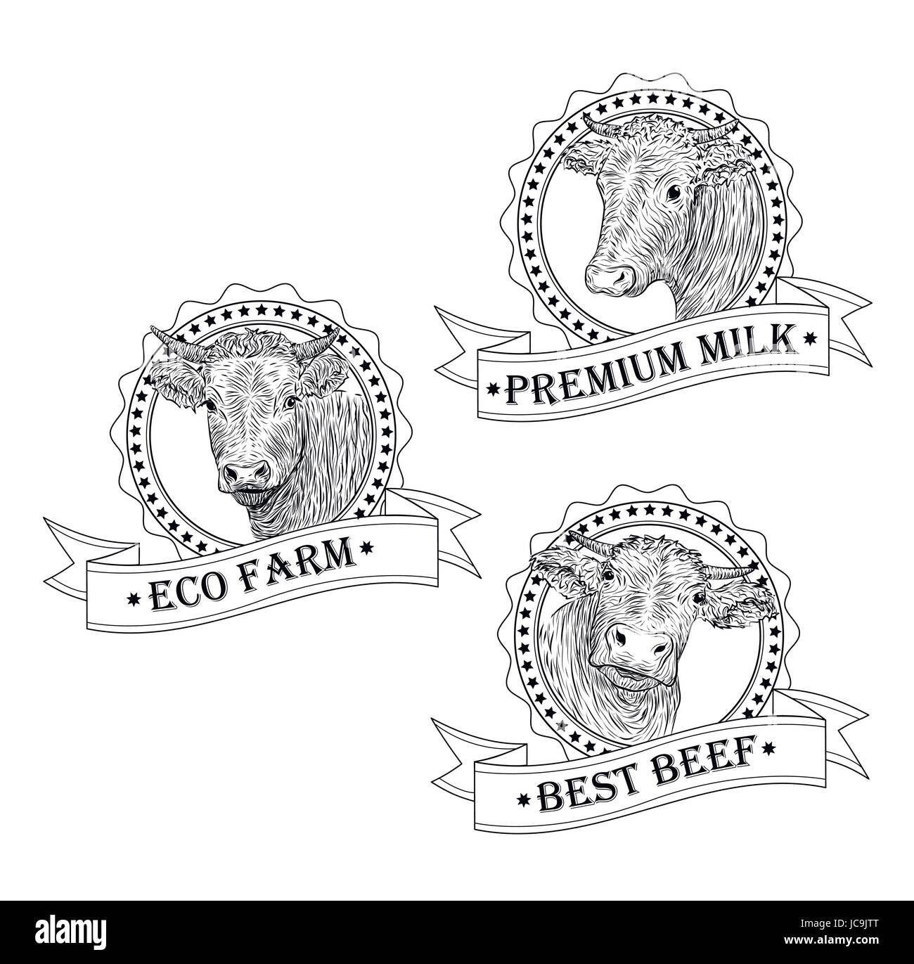 Cow calf bull cute muzzle face set collection variation sticker cow calf bull cute muzzle face set collection variation sticker icon label tag symbol text eco farm beef tape vector beautiful square sign outline buycottarizona