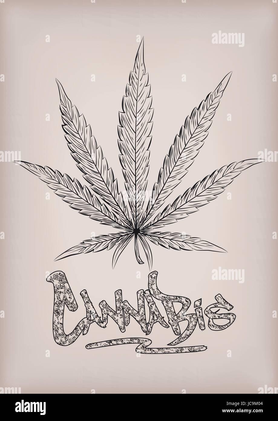 Cannabis marijuana weed leaf silhouette narcotic drug plant cannabis marijuana weed leaf silhouette narcotic drug plant vector beautiful close up top view sign signboard inscription graffiti black outline line biocorpaavc