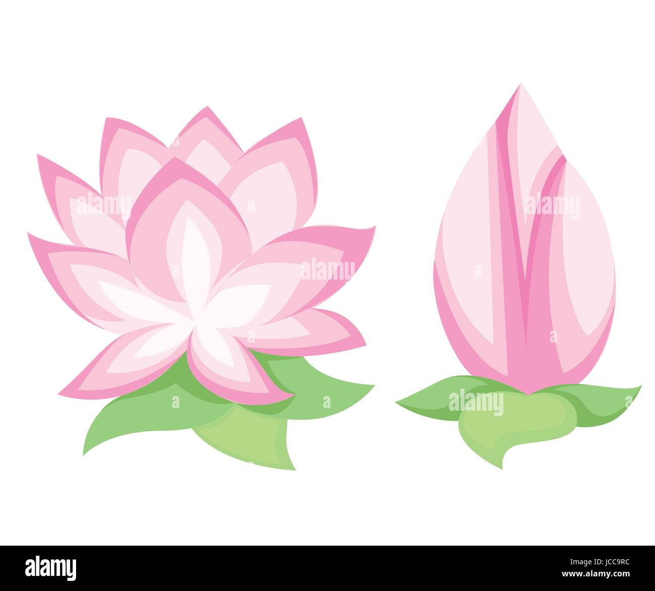 Vector illustration beautiful pink lotus flower isolated on white stock vector vector illustration beautiful pink lotus flower isolated on white background stylish floral spring wallpaper greeting or invitation card dhlflorist Images