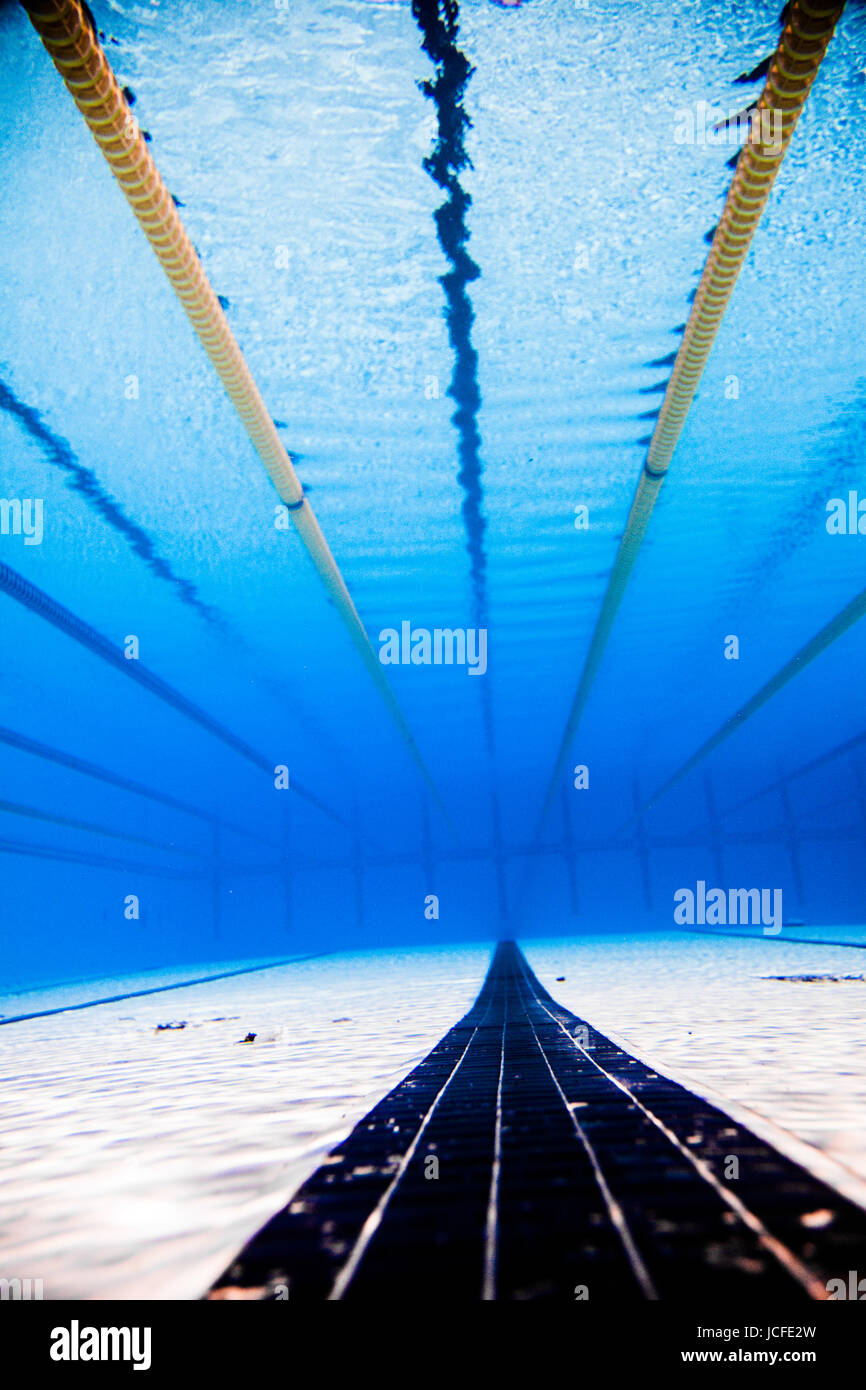 Olympic Swimming Pool Underwater empty 50m olympic outdoor pool and dividing lines from underwater