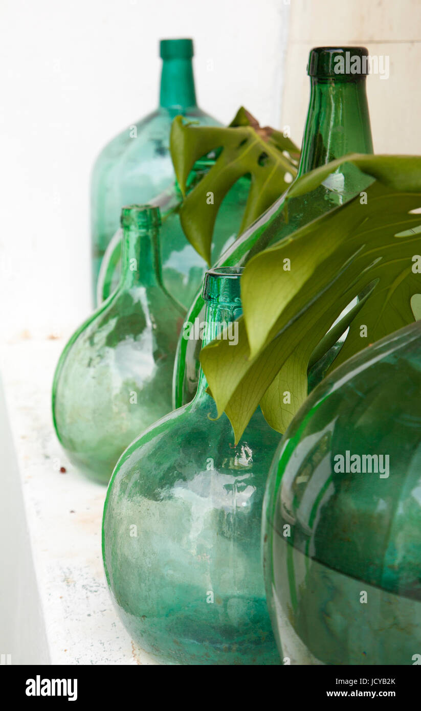 vintage garden decor - old glass containers and monstera leaves on a ...