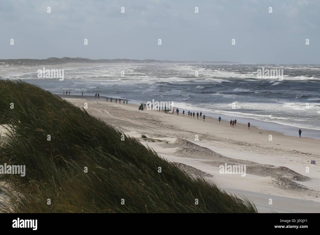 wind hvide sande
