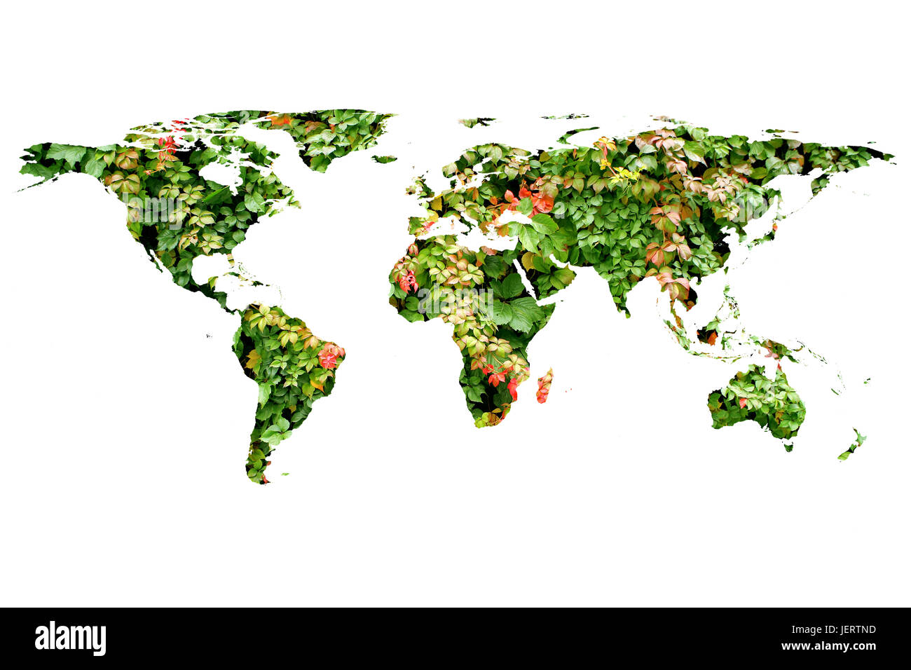 Conceptual image of flat world map and leaves nasa flat world map conceptual image of flat world map and leaves nasa flat world map image used to furnish this image gumiabroncs Images