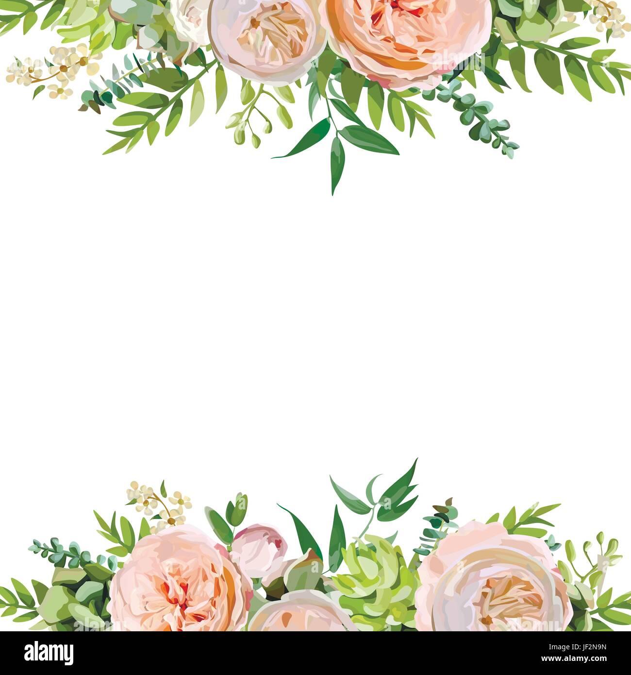 illustration soft floral - photo #33