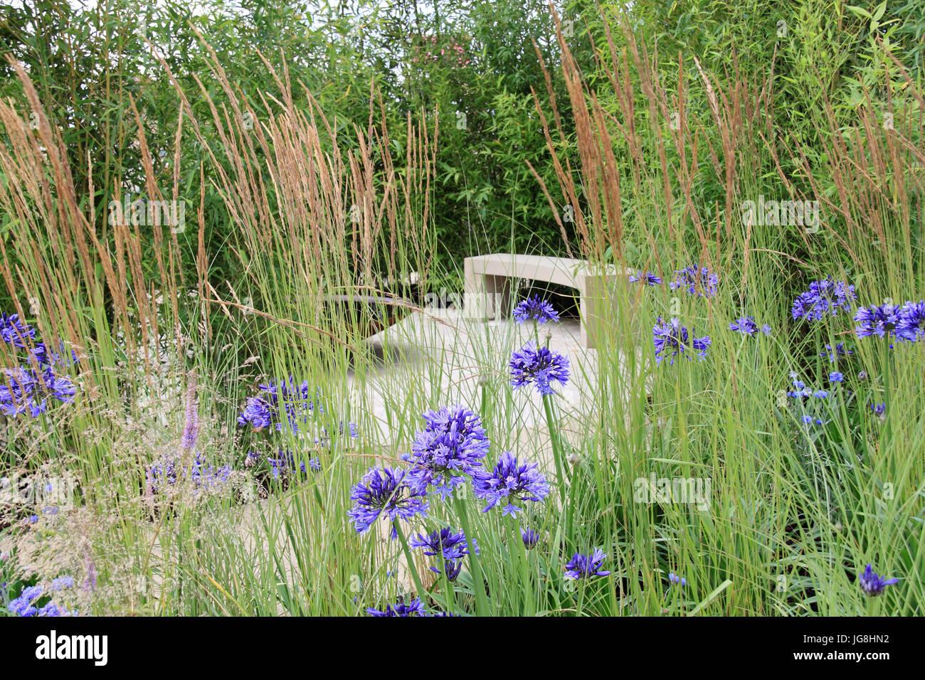 perennial 'sanctuary garden',tom massey. silver-gilt medal