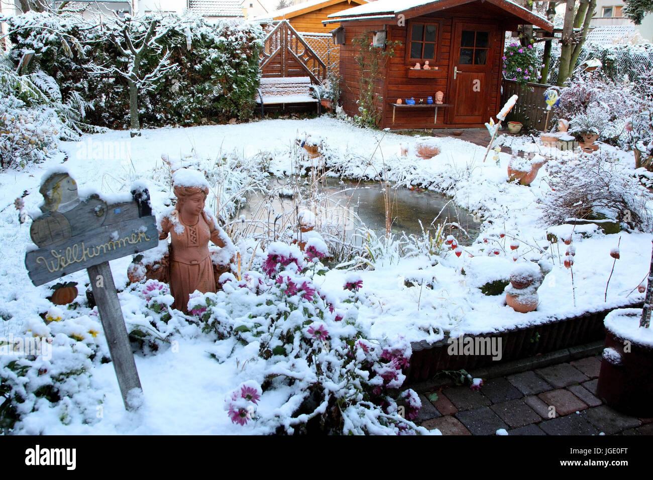 Garten Im Winter garden with pond in winter garten mit teich im winter stock photo