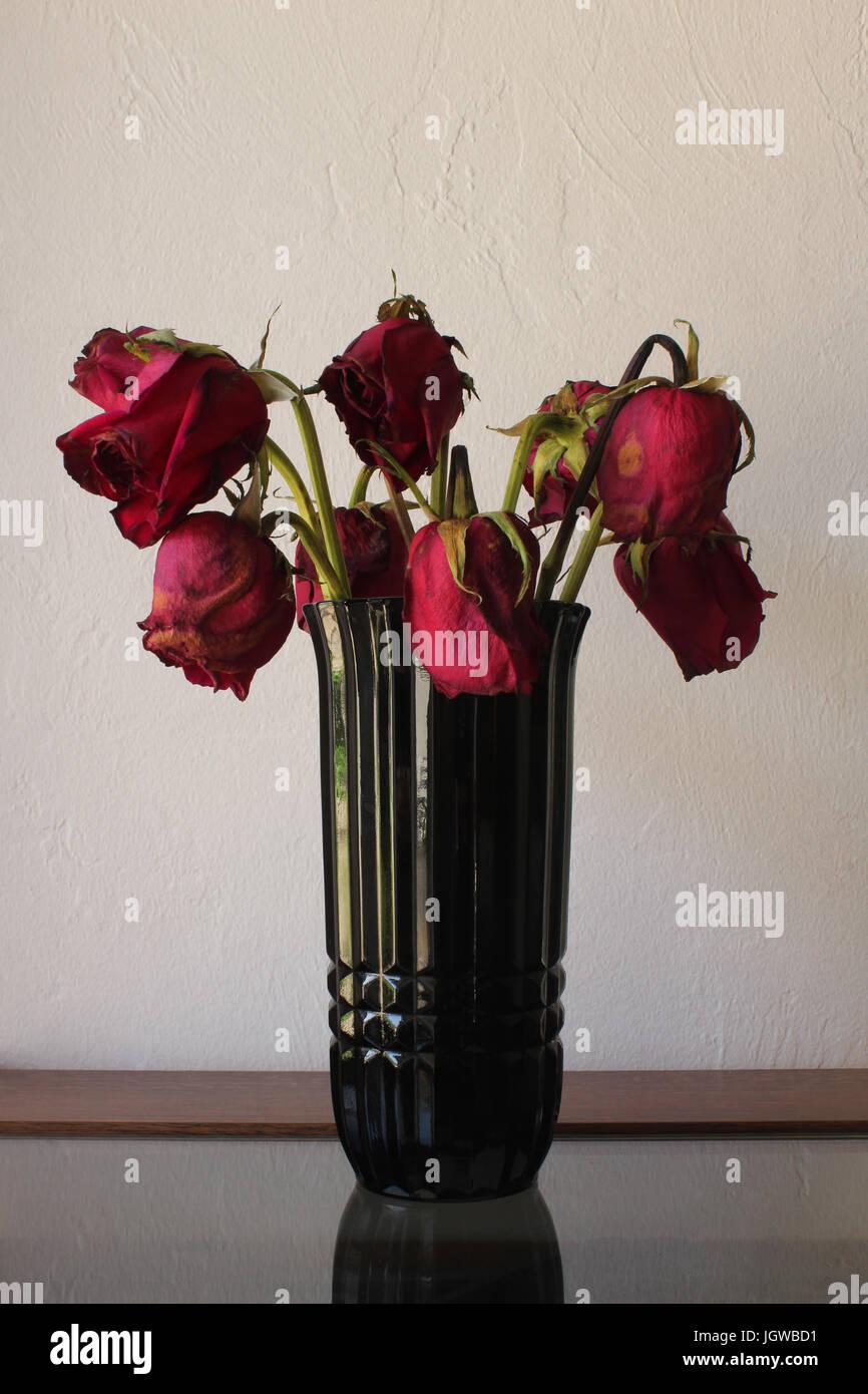 Tall dark green glass vase with 8 sad looking neglected wilting tall dark green glass vase with 8 sad looking neglected wilting drooping red roses reviewsmspy