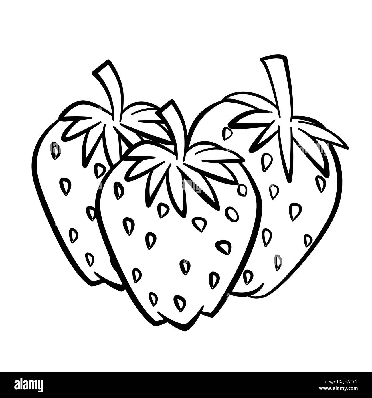 A black and white drawing of a strawberry Stock Photo, Royalty ... for Clipart Strawberry Black And White  56bof