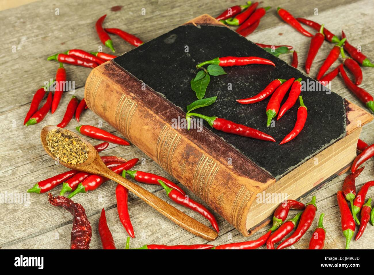 Book of old cookery recipes and fresh chili peppers spicy cuisine book of old cookery recipes and fresh chili peppers spicy cuisine mexican food forumfinder Gallery