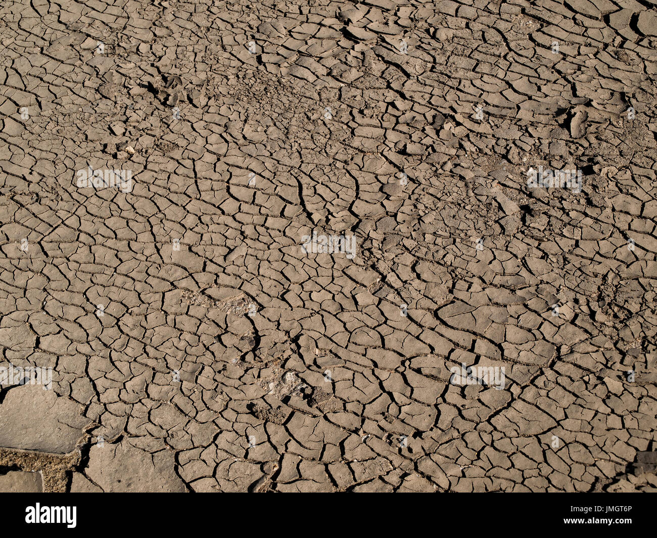 Dry summer crack stock photos dry summer crack stock images alamy photo of dry cracked mud taken by the river in the hot summer day sciox Images