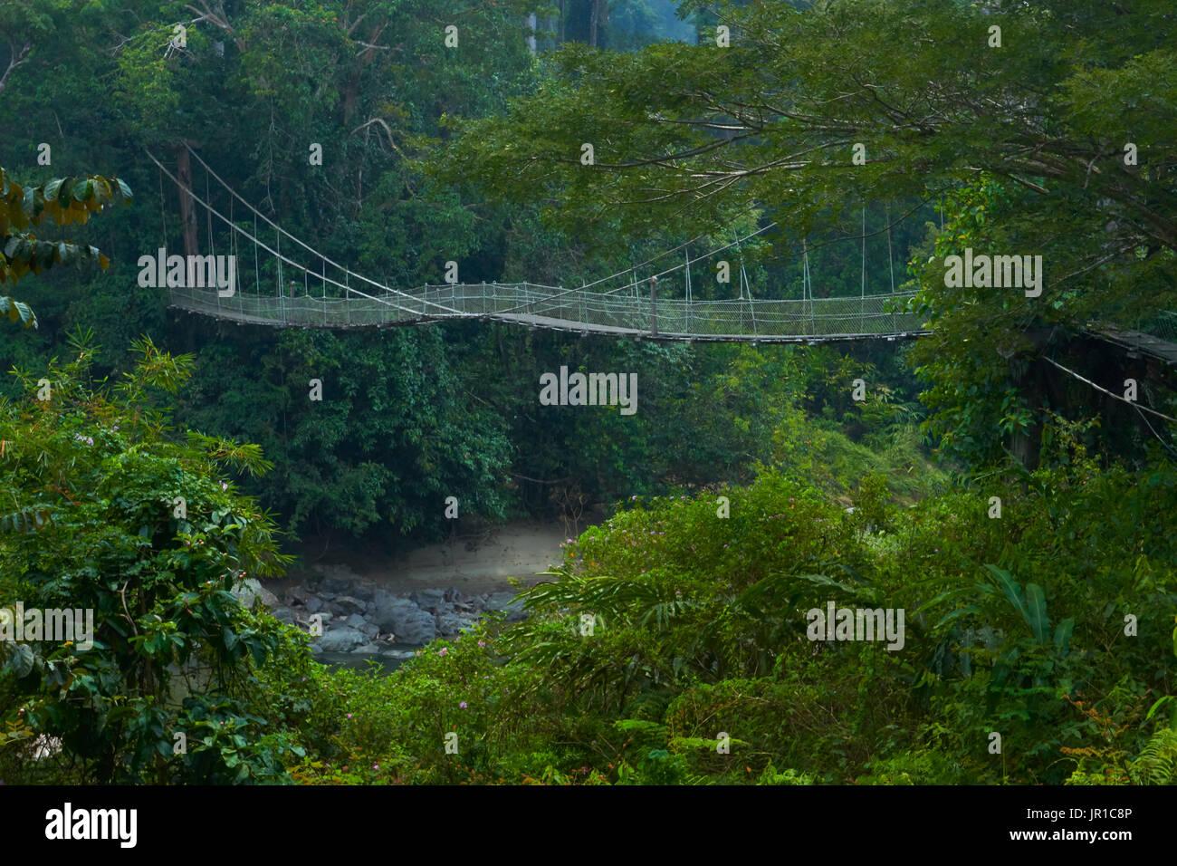 malaisie stock photos u0026 malaisie stock images alamy