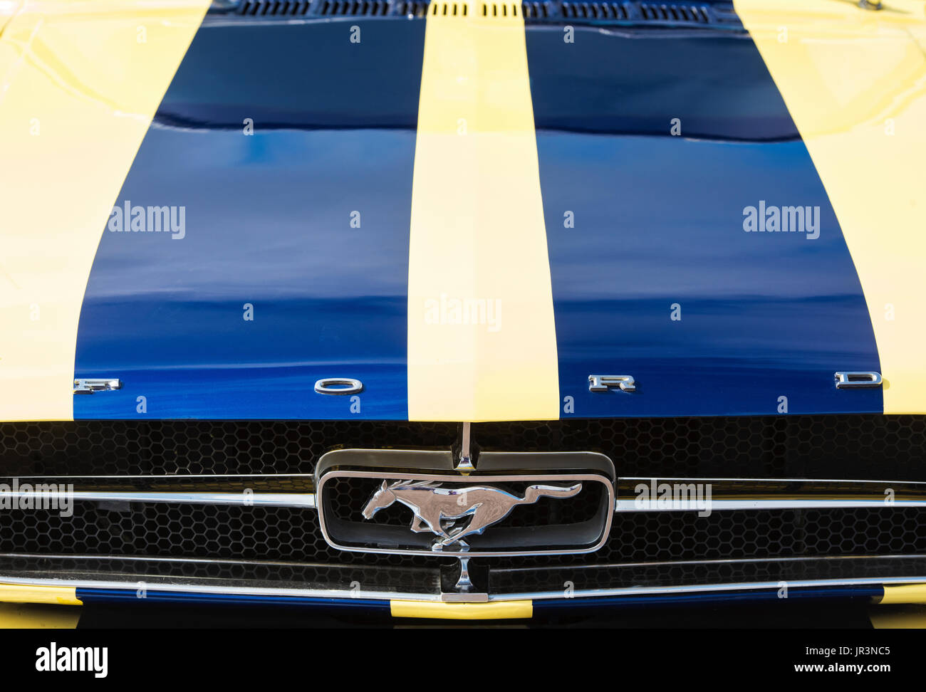 1965 ford mustang hood and badge classic american car