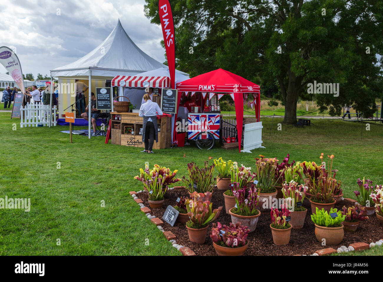 Pimms Tent at RHS Hyde Hall Flower Show 2017 with Display of Carnivorous Plants in Front : pimms tent - memphite.com