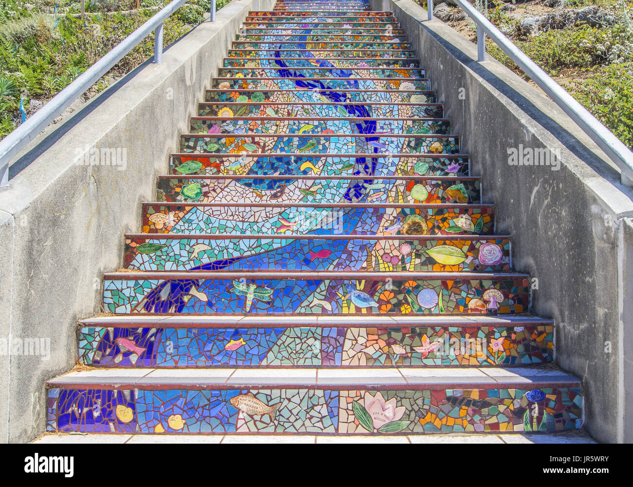 Detail Of The Golden Gates Stairs Mosaic, The 16th Avenue Tiled Steps  Project, San