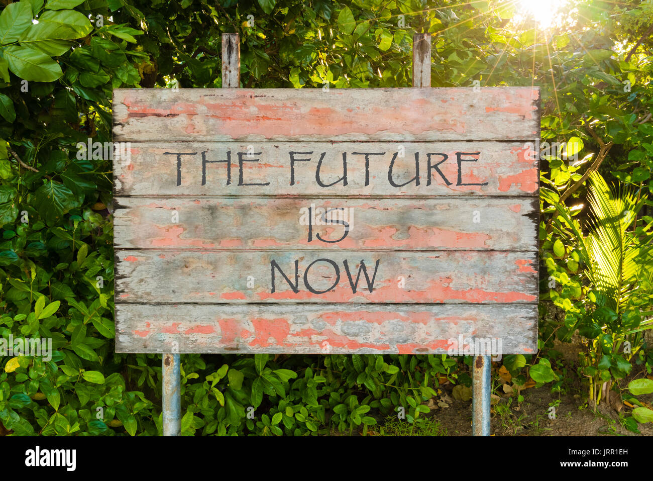 The Future Is Now Quote The Future Is Now Motivational Quote Written On Old Vintage Board