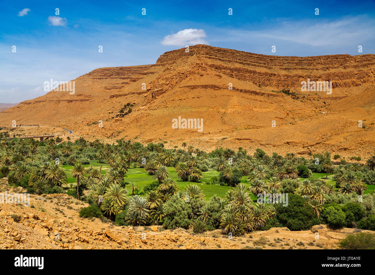 Agriculture. Oasis with palm trees Ziz Valley, Ziz River ... Oasis Geography