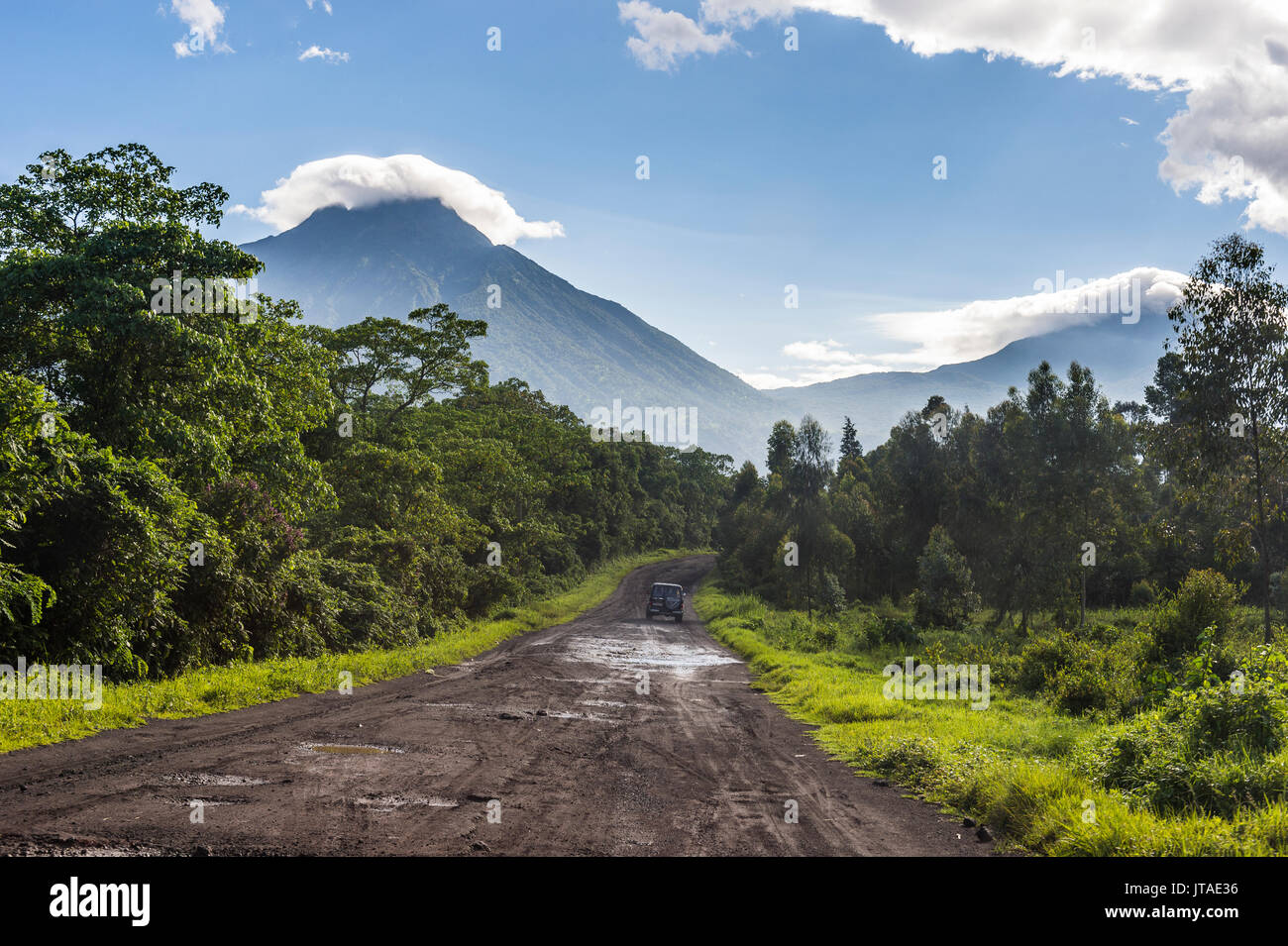 virunga national park essay Science essays: threat of the mountain gorilla search browse essays join now login support tweet into a national park for the conservation of mountain gorillas the albert national park, later named the virunga national park, was the first park established in africa (ngowi.