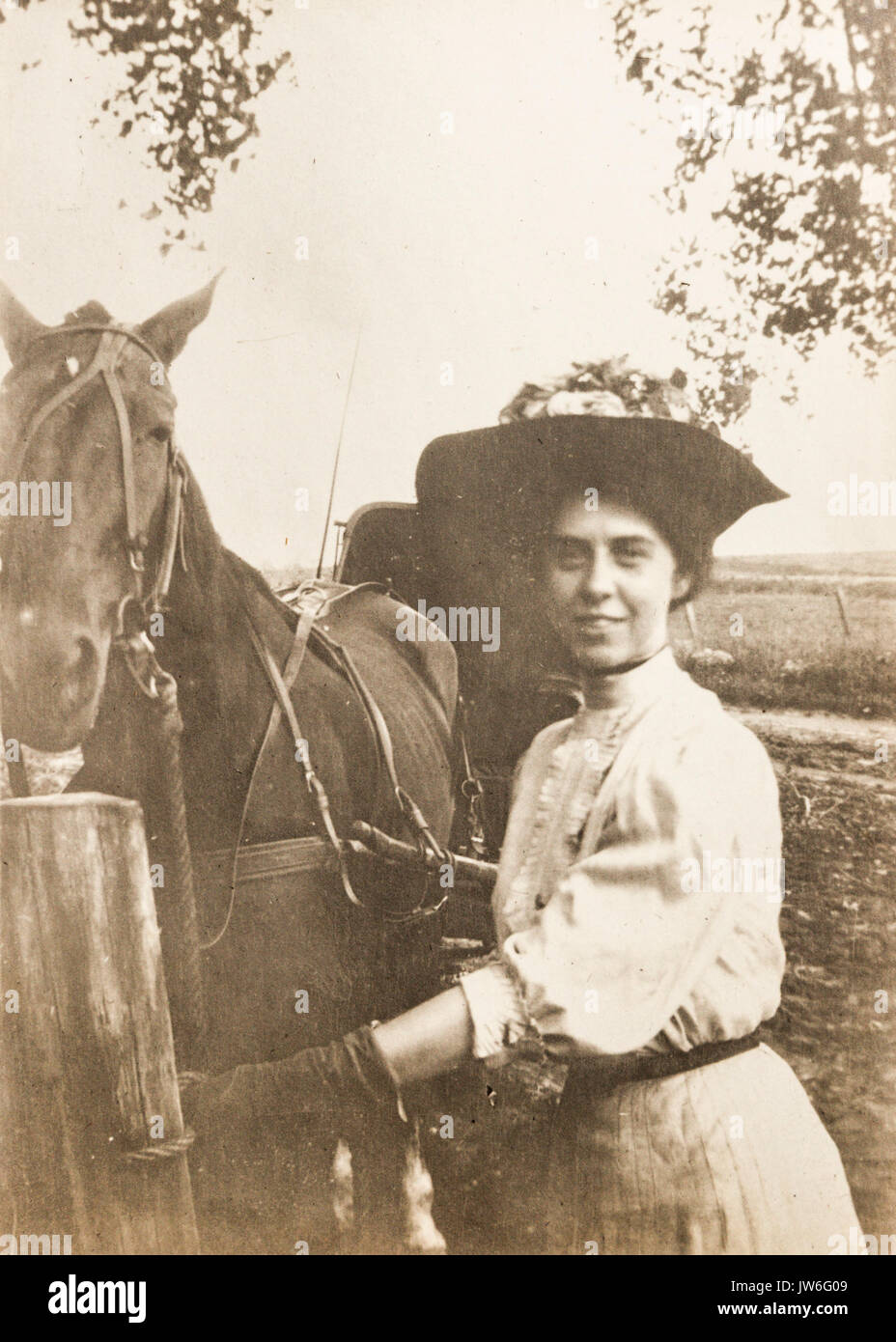 young-woman-with-a-horse-and-carriage-1907-to-1908-in-the-us-state-JW6G09.jpg
