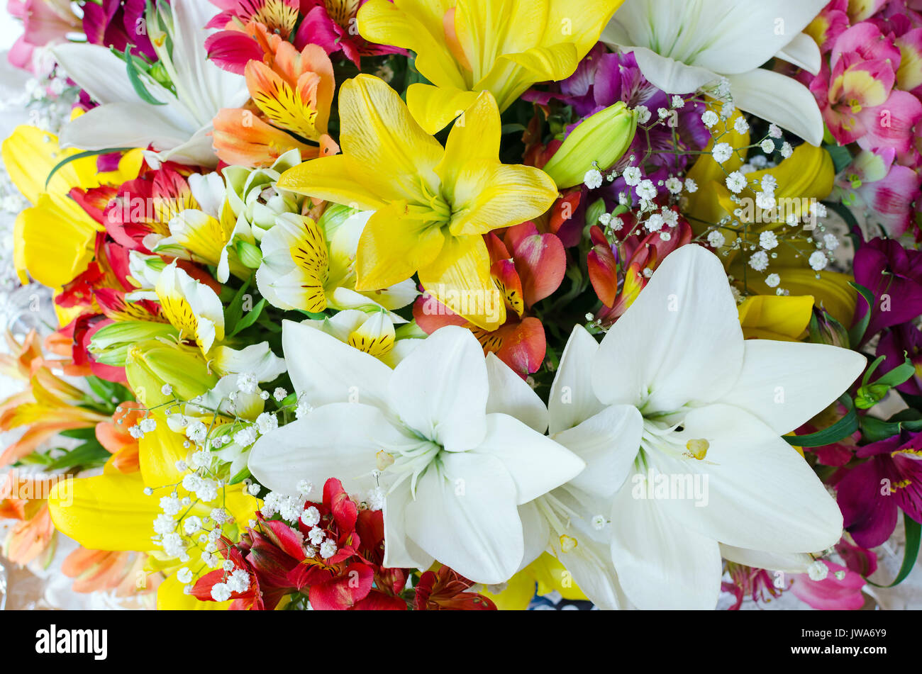 Large bouquet of different flowers floral background pattern of large bouquet of different flowers floral background pattern of flowers lot of natural flowers in colorful composition izmirmasajfo Gallery
