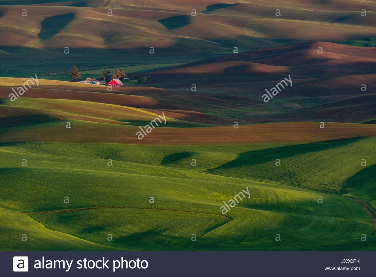 Channeled stock photos channeled stock images alamy for What is rich soil called