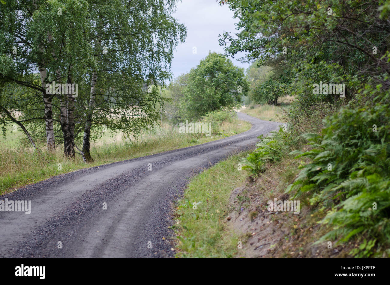 Long Winding Country Dirt Road Stock Photos & Long Winding ...