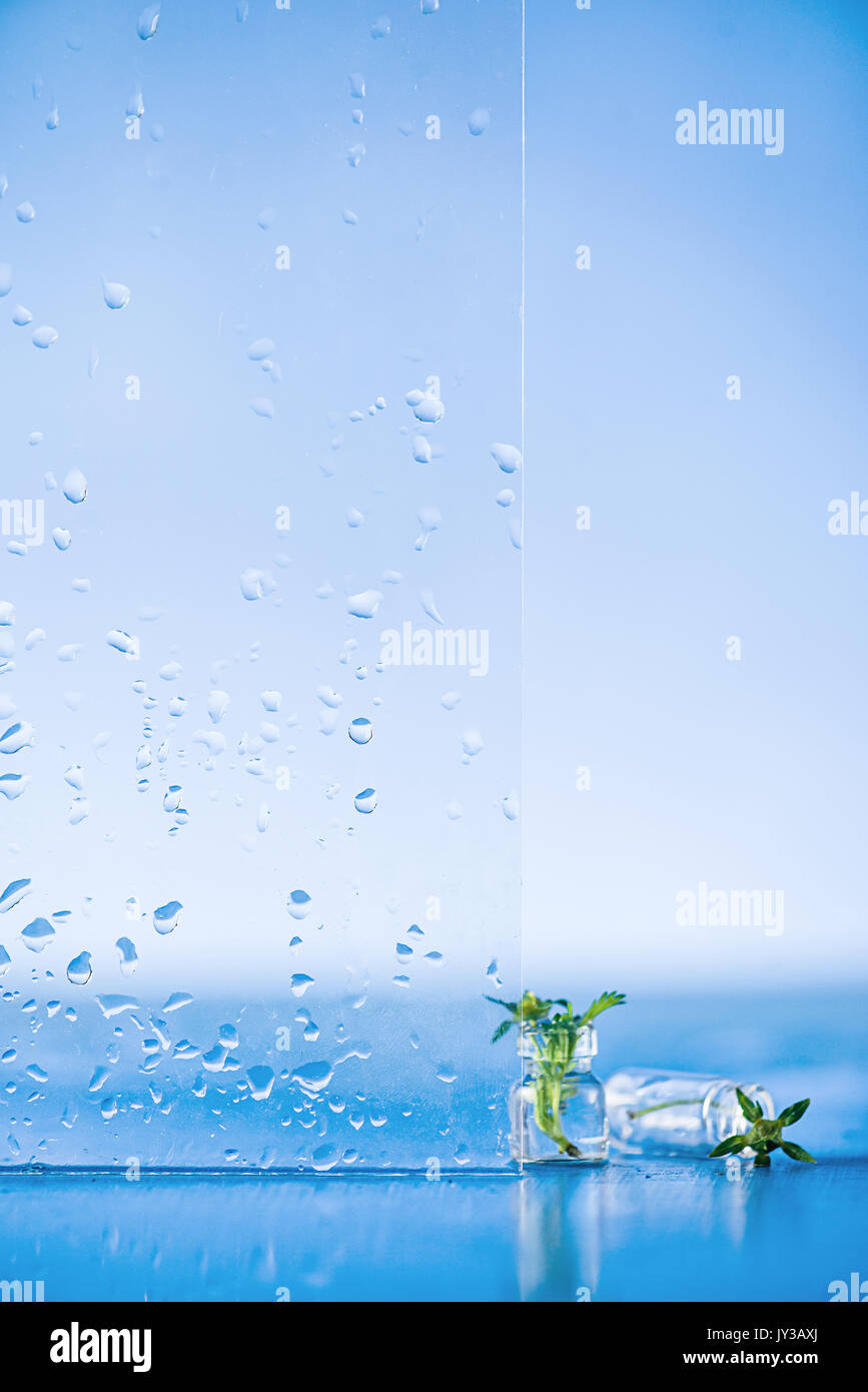 Tiny Water Drops Stock Photos Tiny Water Drops Stock Images Alamy - Amazing images captured tinniest water droplets