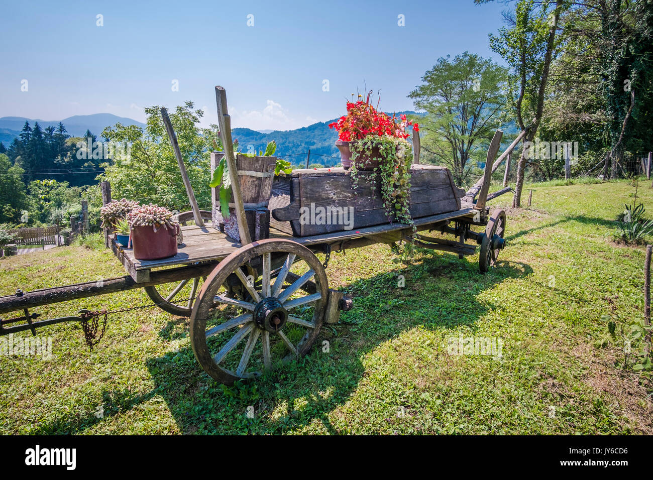 Old cart used as decoration in the garden Stock Photo: 154420146 - Alamy