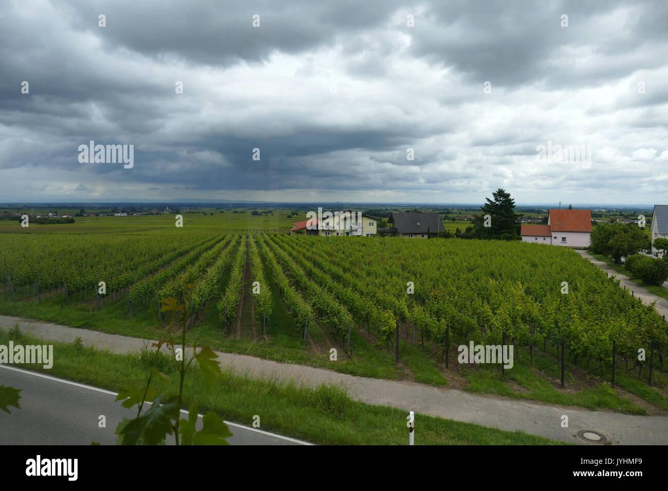 2016.06.19.120005 View Restaurant Das Esszimmer Im Ritterhof Burrweiler    Stock Image