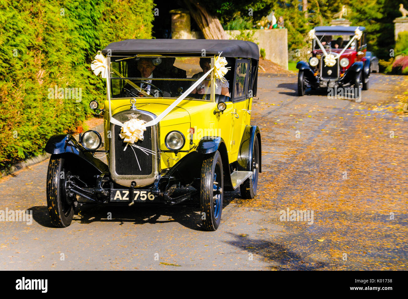 Two old fashioned cars arrive with a bridal party Stock Photo ...