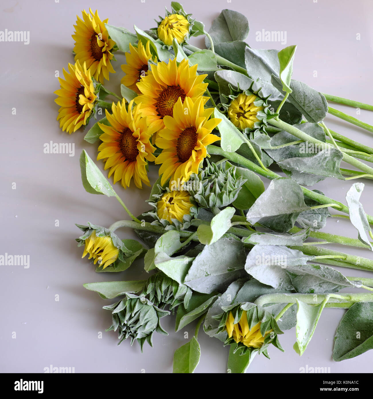Amazing Clay Flower, Handmade Product For Home Decor, Sunflower Bouquet  Bloom In Yellow. Green Leaf On White Background, Beautiful Artificial Flower