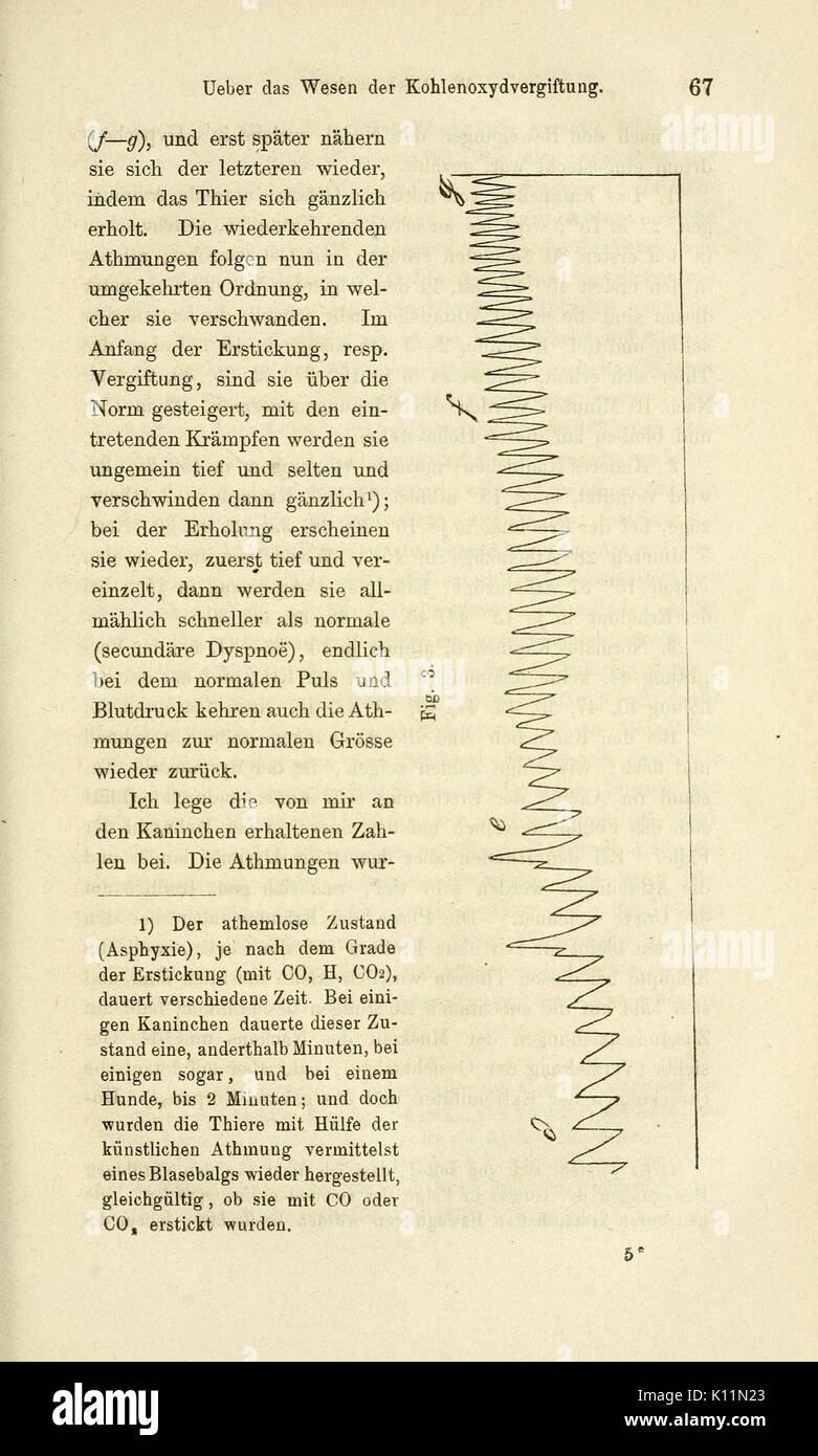 Archiv fur Anatomie, Physiologie und Wissenschaftliche Medicin (Page ...